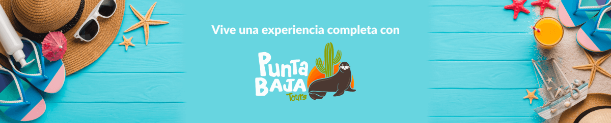 Vive una experiencia completa con Punta Baja Tours